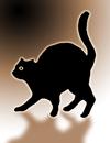 blackcat.png