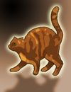 gingercat.png