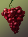 grapes.png