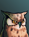 owl2.png