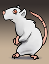 ratalbino.png